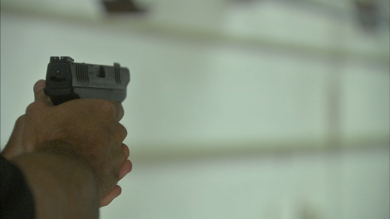Some Illinois gun owners vexed trying to renew state firearm cards