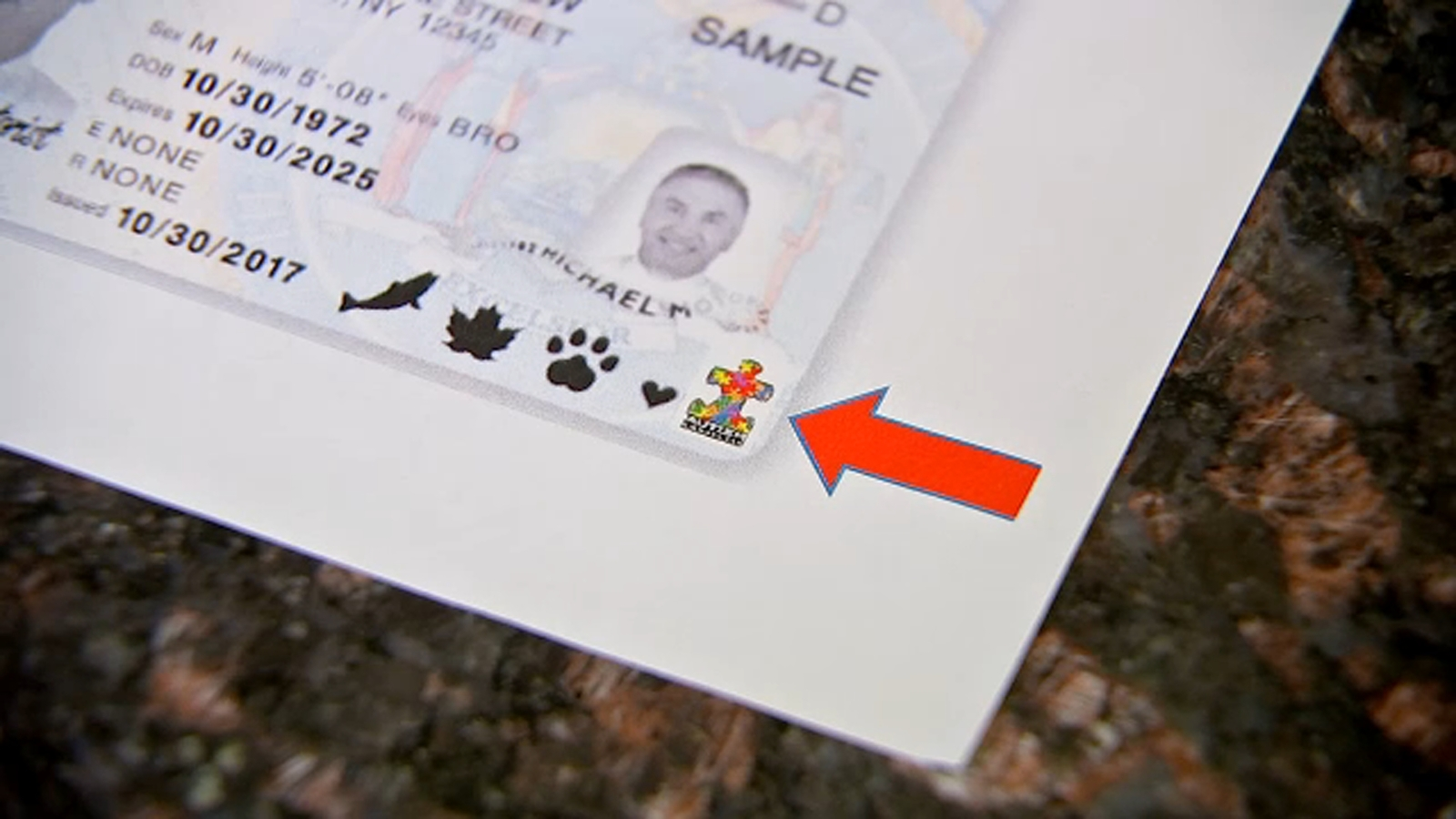 Family pushes for autism symbol to be added to New York driver's licenses