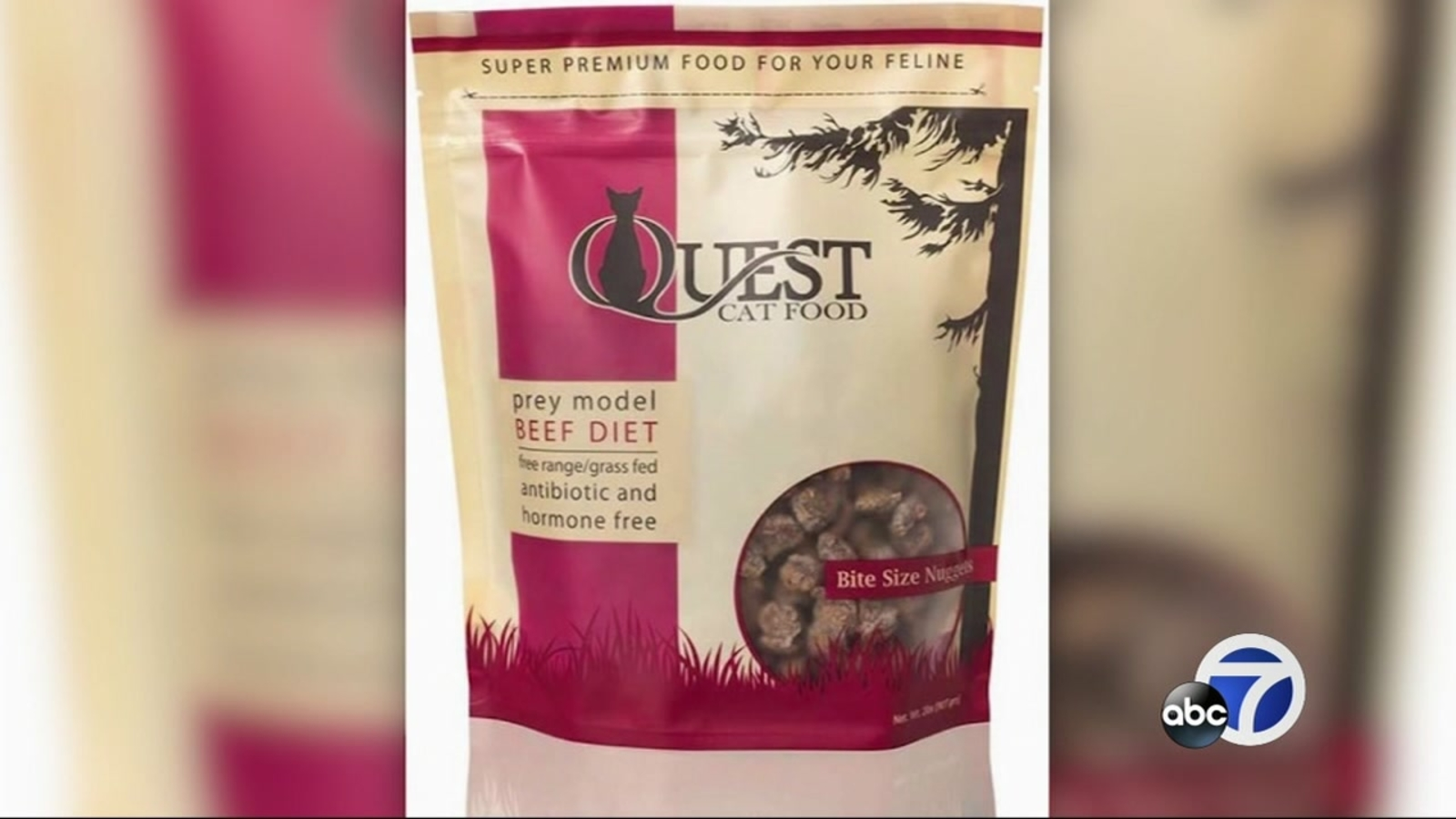 CONSUMER CATCH-UP: Cat food recalled due to salmonella, consumers warned of counterfeit fire extinguishers, and Dodge minivans recalled for loose seats - KGO-TV