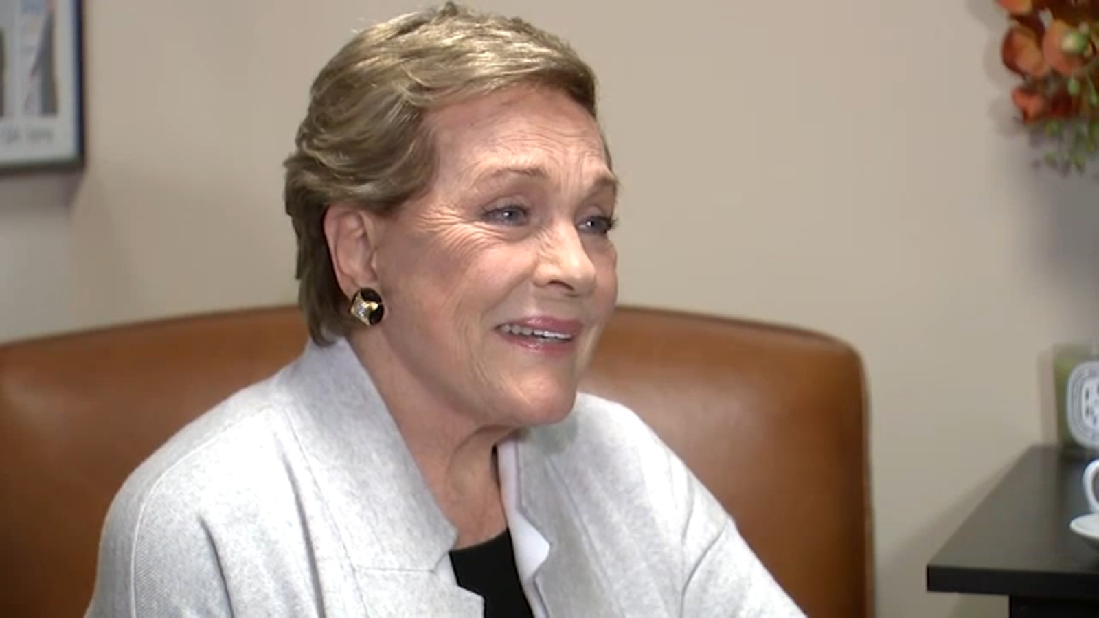 Julie Andrews reflects on career, fans, family in new memoir 'Home Work'