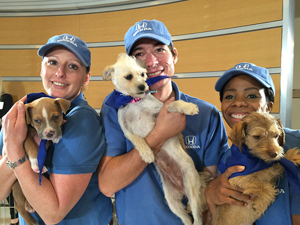 "<div class=""meta image-caption""><div class=""origin-logo origin-image none""><span>none</span></div><span class=""caption-text"">Thanks to the Helpful SoCal Honda Dealers Team for their support of ABC7's Puppypalooza! (KABC)</span></div>"