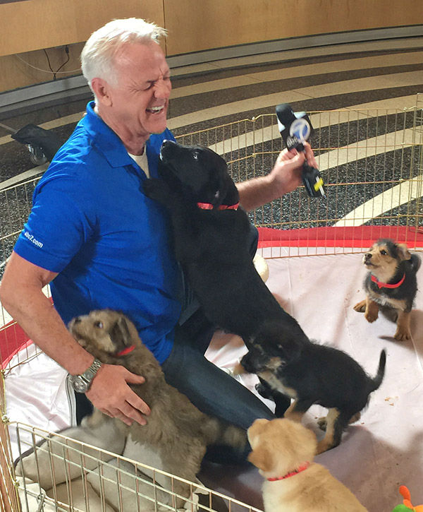 "<div class=""meta image-caption""><div class=""origin-logo origin-image none""><span>none</span></div><span class=""caption-text"">Garth plays with the puppies during our 2nd annual Puppypalooza Adoption Event on Tuesday, March 24, 2015. (KABC)</span></div>"