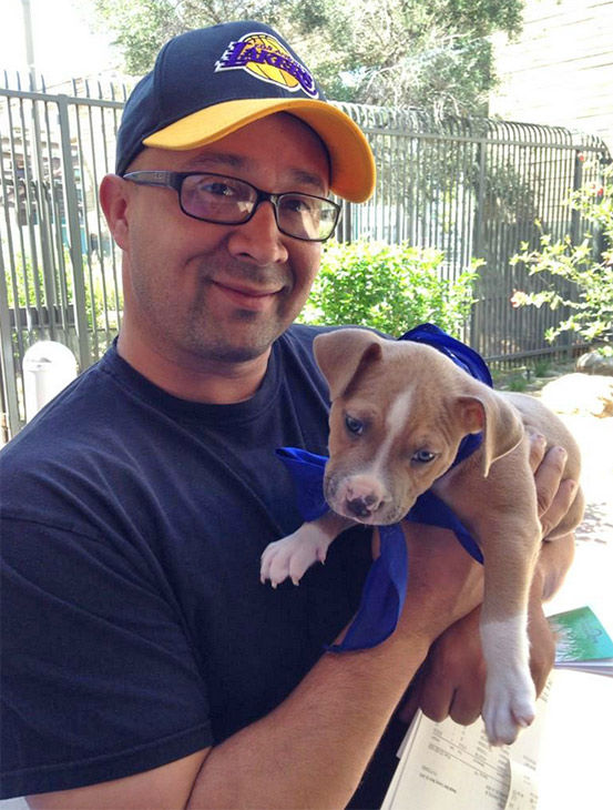 "<div class=""meta image-caption""><div class=""origin-logo origin-image none""><span>none</span></div><span class=""caption-text"">Copper, a 2-month-old fawn and white Pit Bull Terrier, was adopted by Joey Rios of Eagle Rock. (KABC)</span></div>"