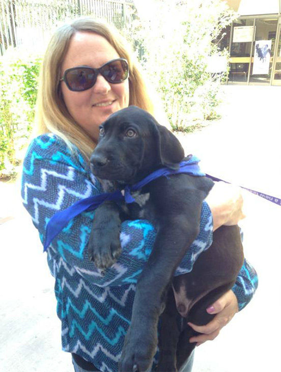 "<div class=""meta image-caption""><div class=""origin-logo origin-image none""><span>none</span></div><span class=""caption-text"">Diane Oaks from Newbury Park adopted Lucky, a 3-month-old Labrador Retriever and Mastiff mix. (KABC)</span></div>"