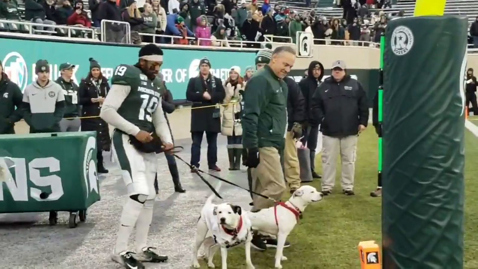 Michigan State football player takes to field with dogs for Senior Night after losing both parents