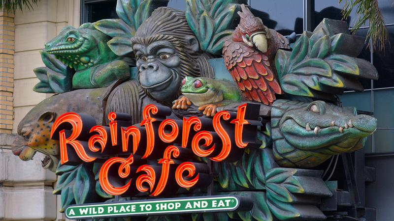 Schaumburg Rainforest Cafe at Woodfield Mall to close Jan. 1 on science cafe, halloween cafe, corner bakery cafe, jungle cafe, zoo cafe, aquarium cafe, blue cafe, vegas cafe, sunrise cafe, sandella's flatbread cafe, hardrock cafe, animal cafe, first hard rock cafe, london cafe, new hard rock cafe, disney cafe, t-rex cafe, island cafe, space cafe, urbane cafe,