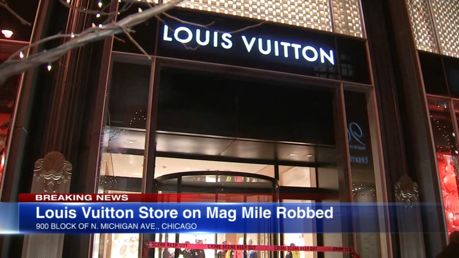 Michigan Avenue Louis Vuitton Store Targeted By Group Of Thieves Abc7 Chicago