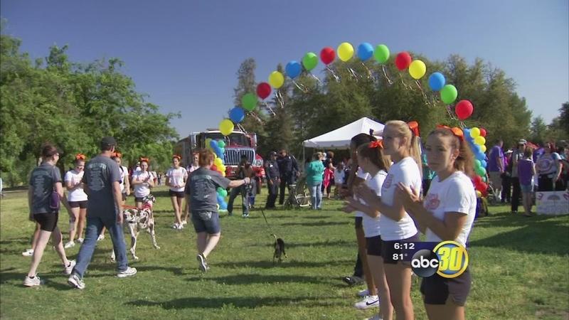 Fresno Walk Raises Funds For Juvenile Diabetes Research Abc30 Com
