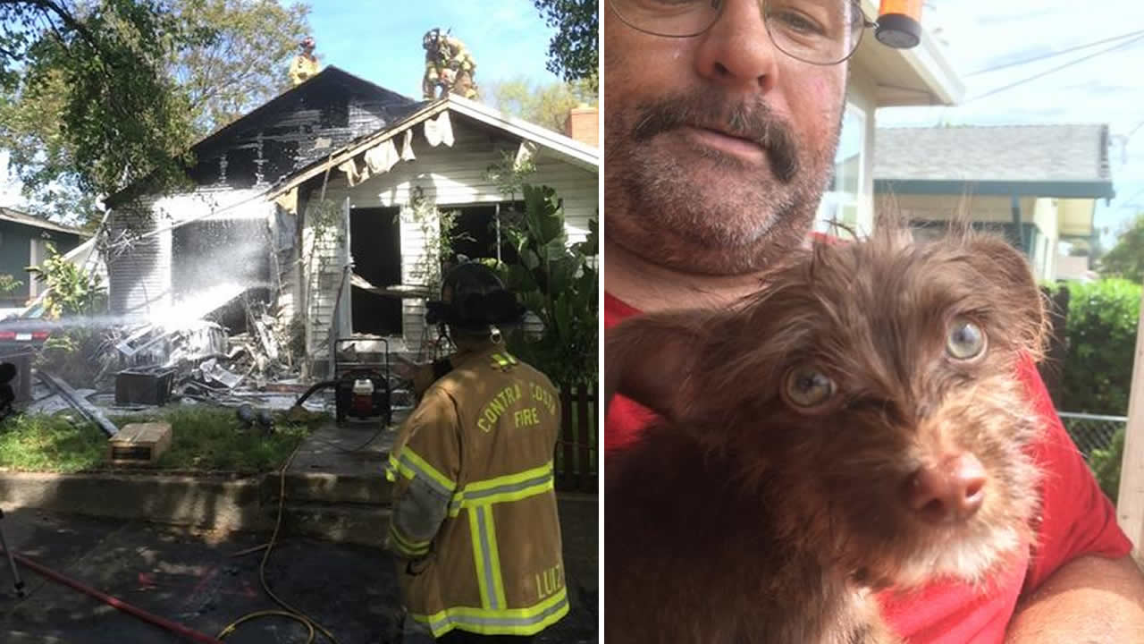 Crews rescued a dog from a two-alarm house fire in Antioch, Calif. on March 30, 2015.