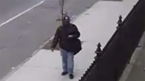 Suspect in Society Hill car break-in