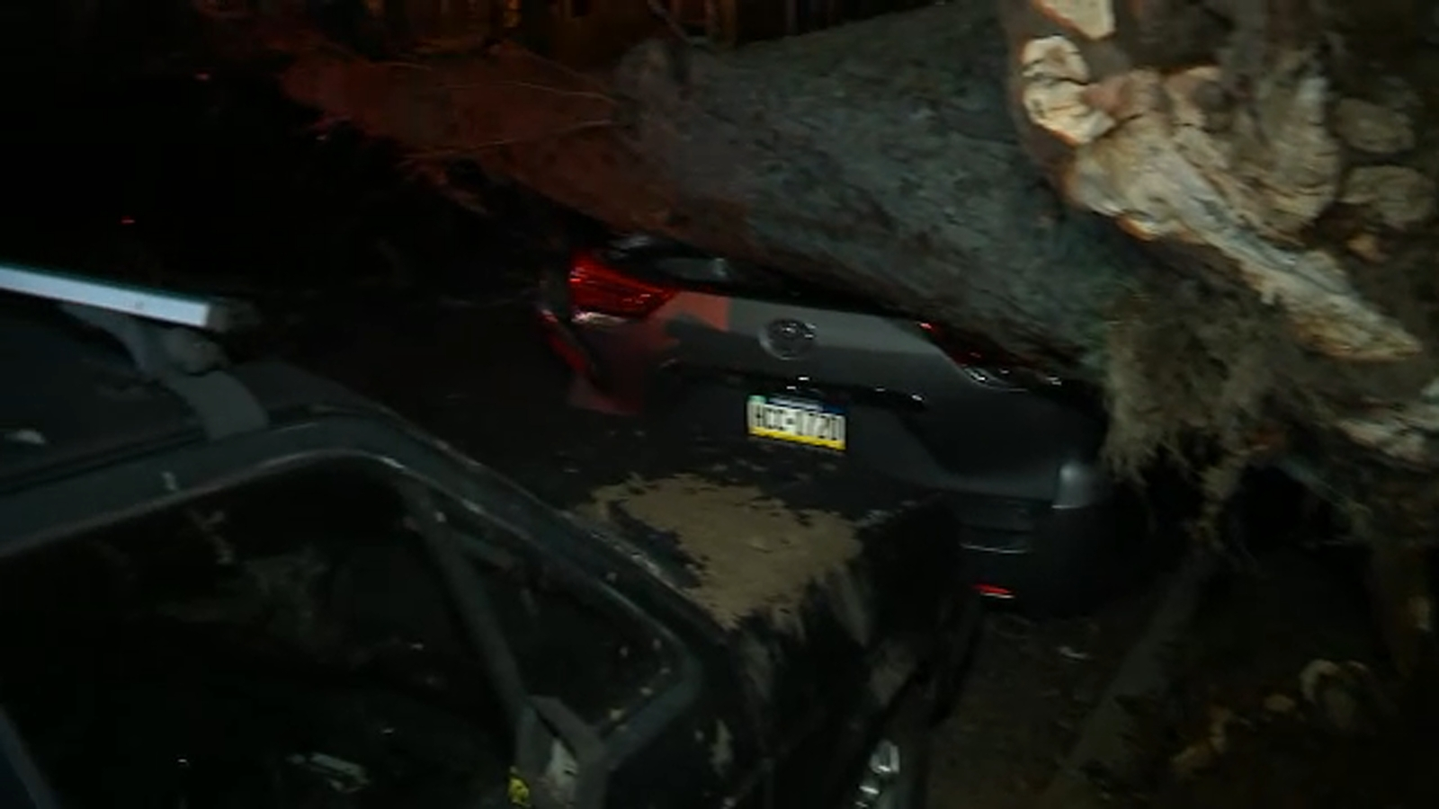 Gusty winds cause tree to fall on cars, knock out power in Queens
