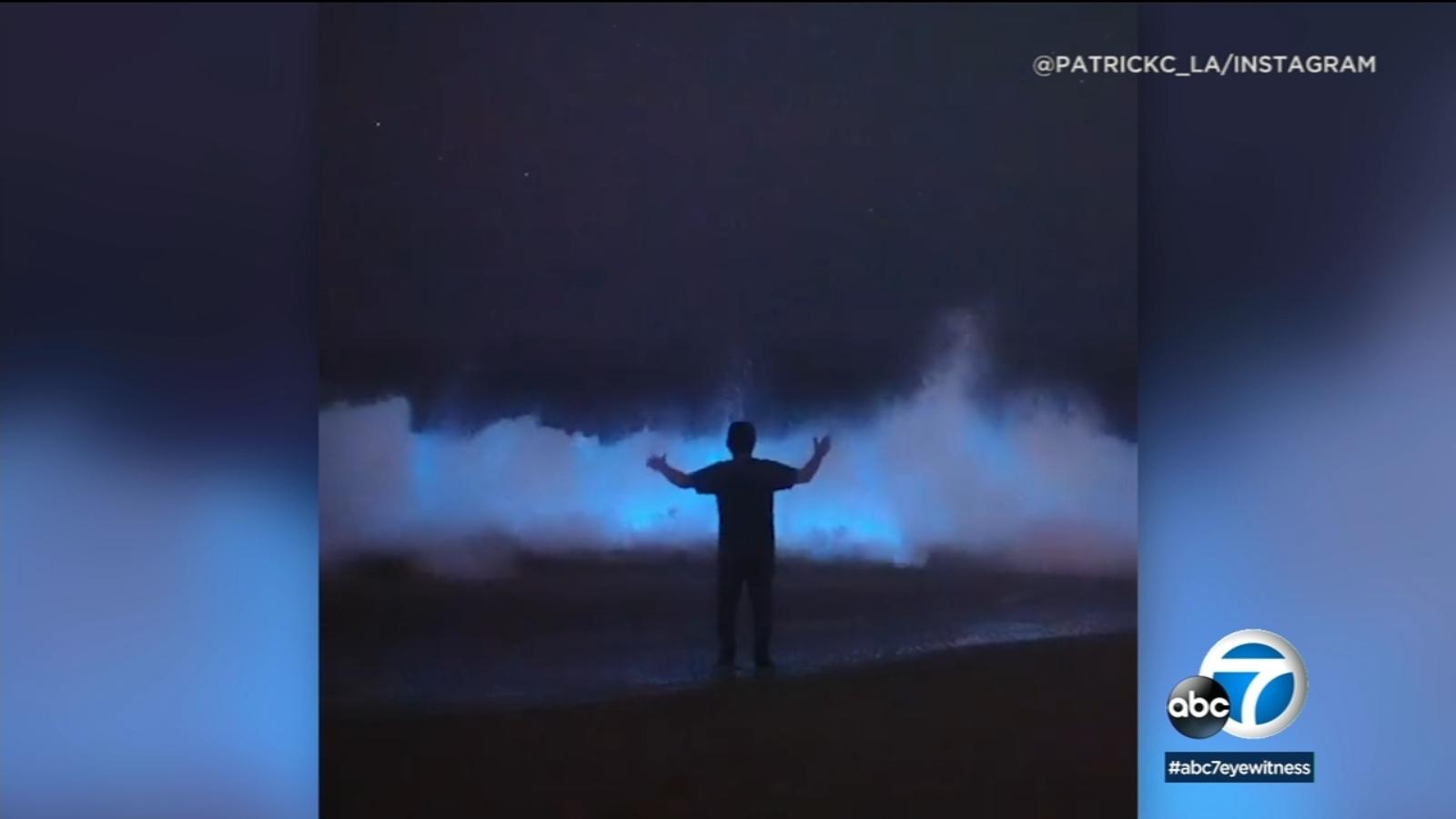 Rare Bioluminescent Waves Turn Ocean Neon Blue on California Beach