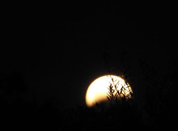 """<div class=""""meta image-caption""""><div class=""""origin-logo origin-image none""""><span>none</span></div><span class=""""caption-text"""">A lunar eclipse is seen in this photo from an ABC7 viewer using the #ABC7Eyewitness.</span></div>"""