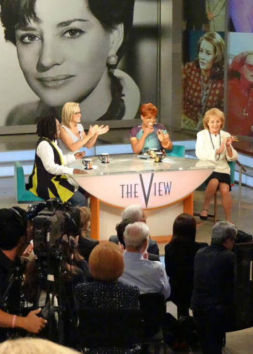 """<div class=""""meta image-caption""""><div class=""""origin-logo origin-image """"><span></span></div><span class=""""caption-text"""">Behind the scenes of Barbara Walters' last day on The View. (WABC Photo/ Sandy Kenyon)</span></div>"""