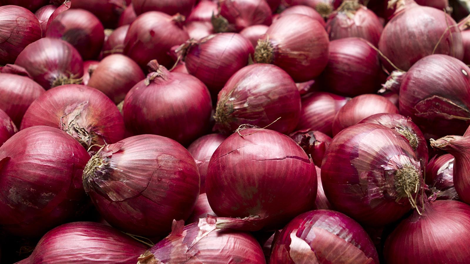 6347104 080120 cc shutterstock red onions img jpg?w=1600.'