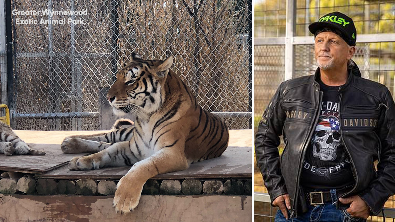 Greater Wynnewood Exotic Animal Park in Oklahoma from Netflix's 'Tiger  King' closes to public - ABC7 Los Angeles