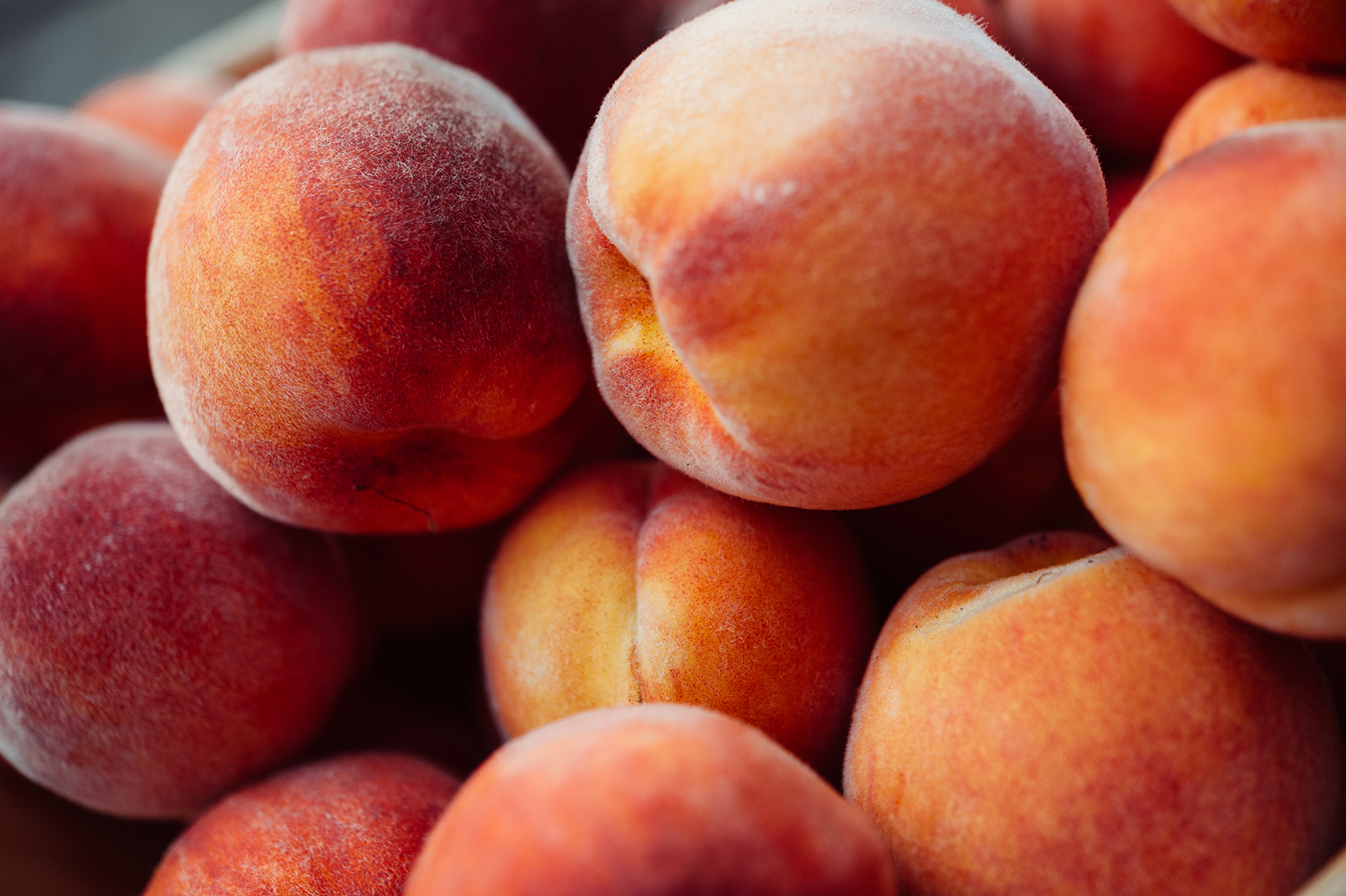 Peaches linked to salmonella outbreak that has sickened people in 9 states including New Jersey and Pennsylvania
