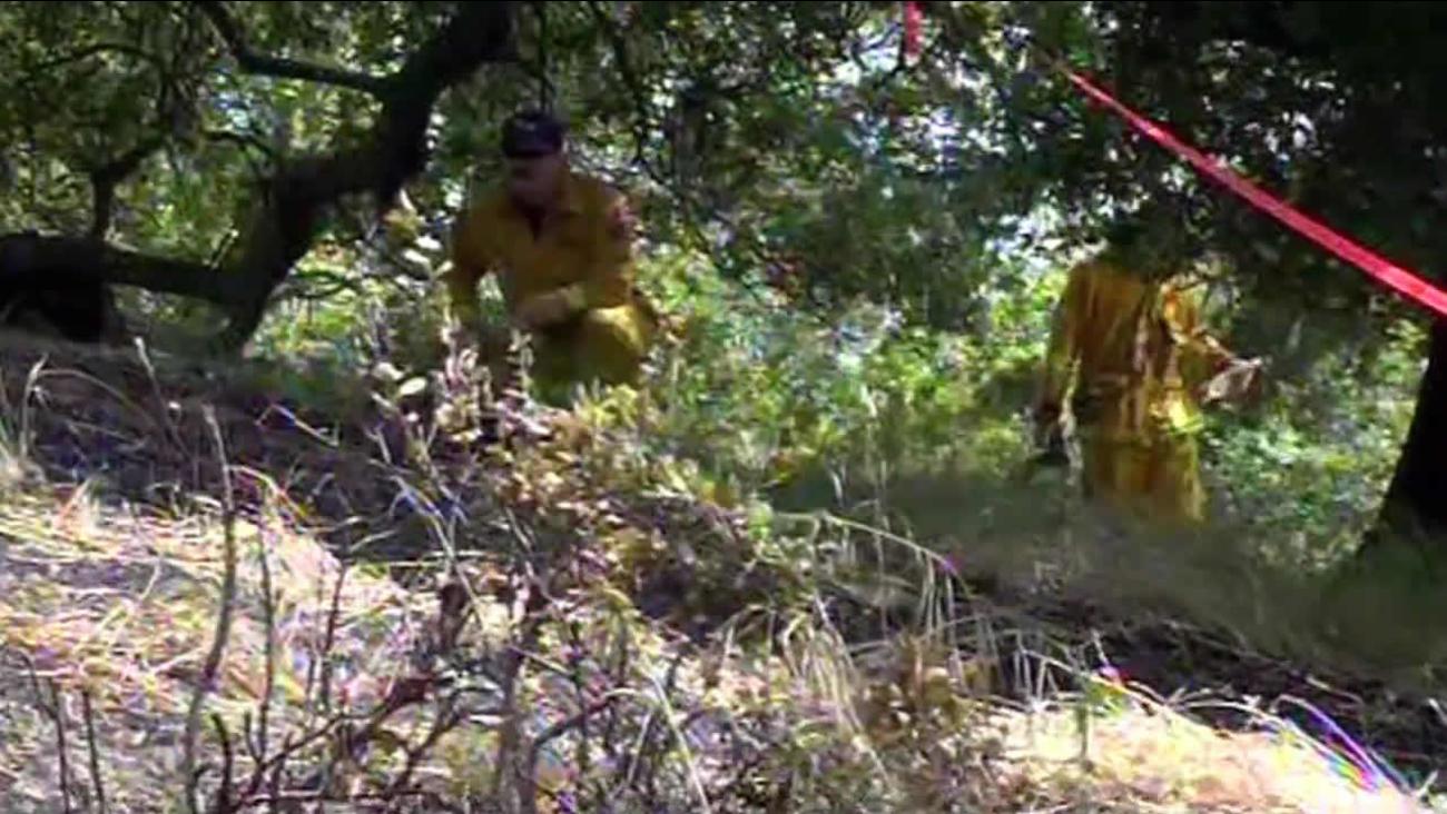 Officials investigate series of Novato fires