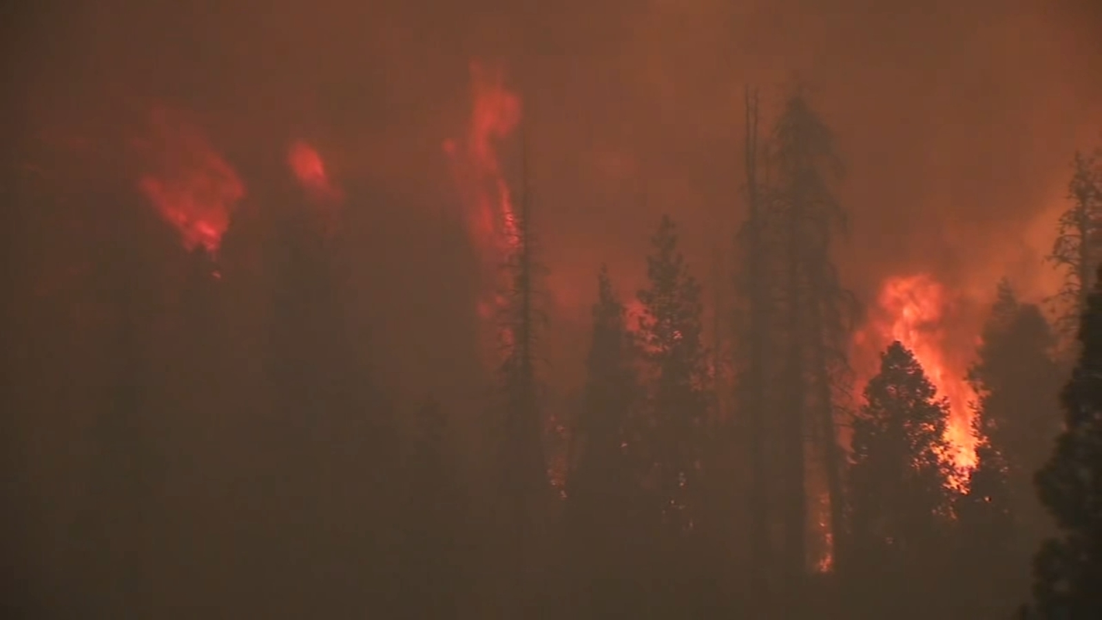 6422075 091420 kfsn 5a creek fire vid jpg?w=1600