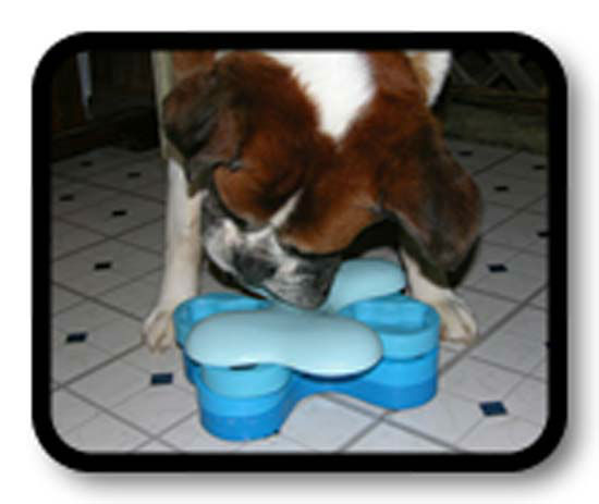 "<div class=""meta image-caption""><div class=""origin-logo origin-image none""><span>none</span></div><span class=""caption-text"">Indoor interactive toys that help wear out your dog (KTRK Photo/ nina-ottosson.com)</span></div>"