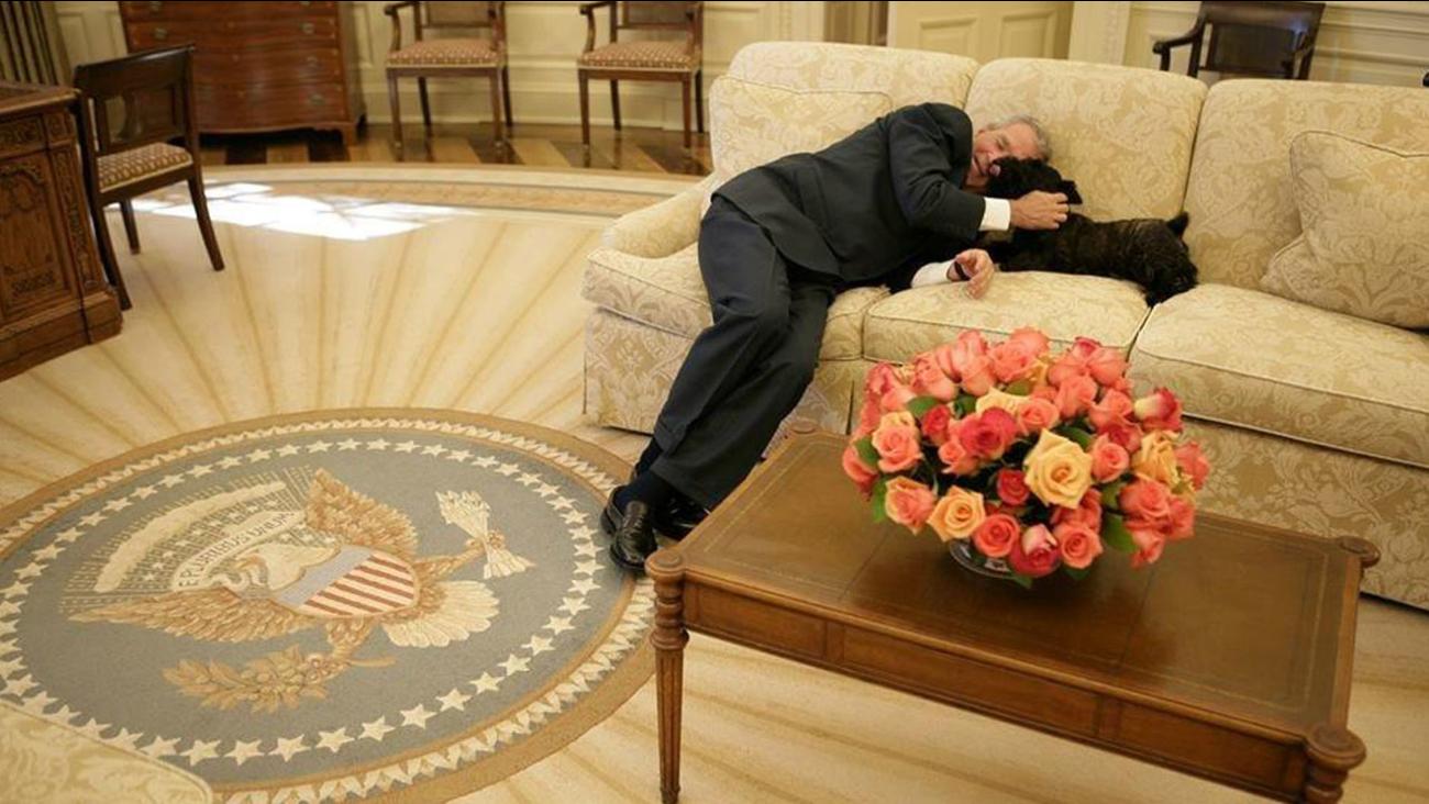 Miss Beazley Dog Belonging To President George W Bush Put Down