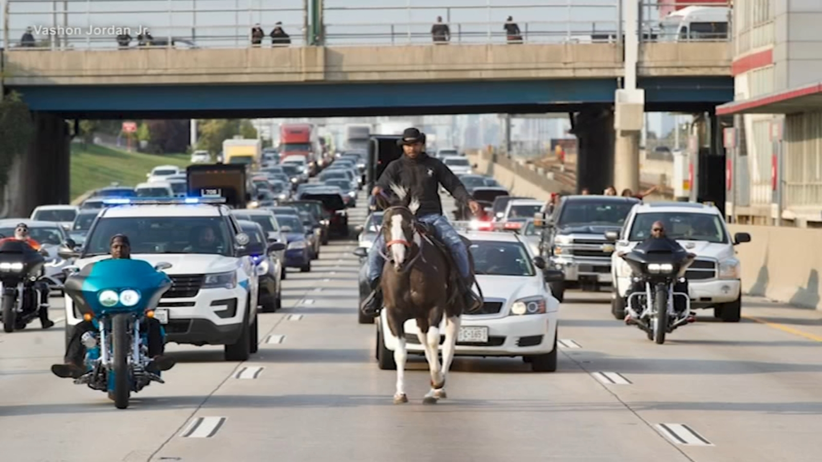 Chicago's Dreadhead Cowboy rides horse on Dan Ryan Expressway; charged reckless conduct, trespassing, ISP says
