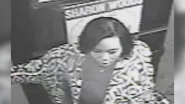 Suspect sought in Walnut Street apartment break-ins