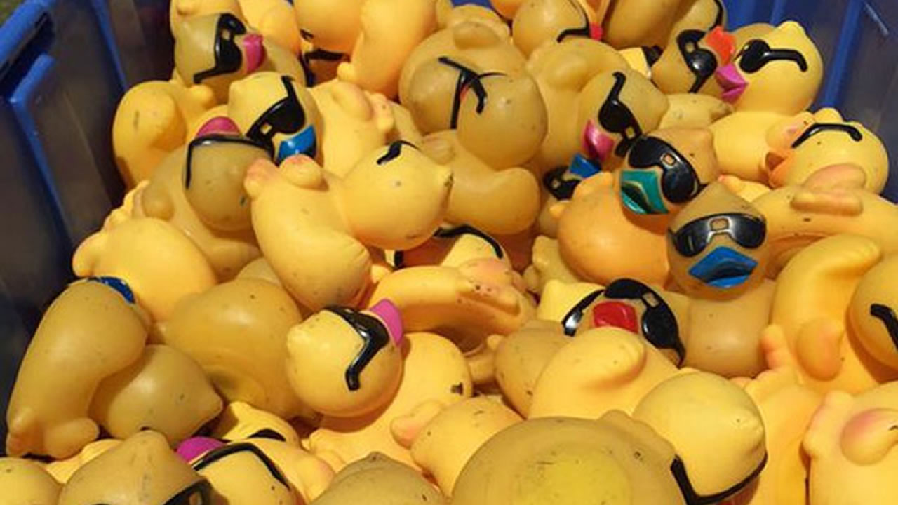 Fayetteville duck derby preview
