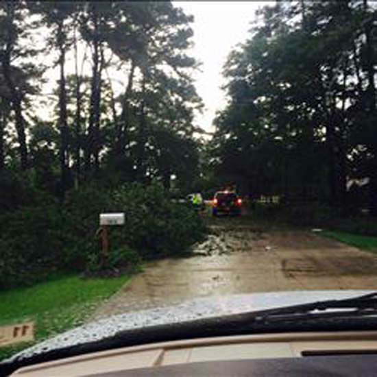 """<div class=""""meta image-caption""""><div class=""""origin-logo origin-image none""""><span>none</span></div><span class=""""caption-text"""">These are photos our viewers sent into Eyewitness News Saturday, April 25. If you have photos, email them to news@abc13.com or upload them using #abc13eyewitness (KTRK Photo/ iWitness Reports)</span></div>"""