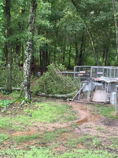 "<div class=""meta image-caption""><div class=""origin-logo origin-image none""><span>none</span></div><span class=""caption-text"">These are viewer photos of storm damage across the viewing area Monday morning.  If you have photos, email them to us at news@abc13.com or post it using #abc13eyewitness (Photo/iWitness Reports)</span></div>"