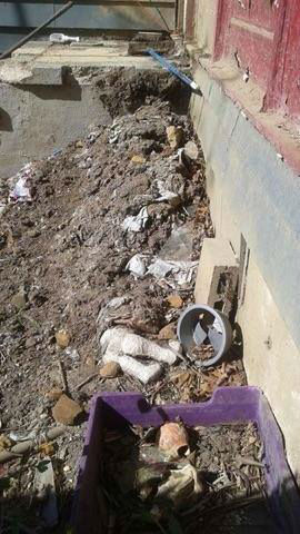 """<div class=""""meta image-caption""""><div class=""""origin-logo origin-image none""""><span>none</span></div><span class=""""caption-text"""">Rescue crews found 40 dogs in an abandoned home on Spruce Street in Lakewood Thursday. (Husky House)</span></div>"""