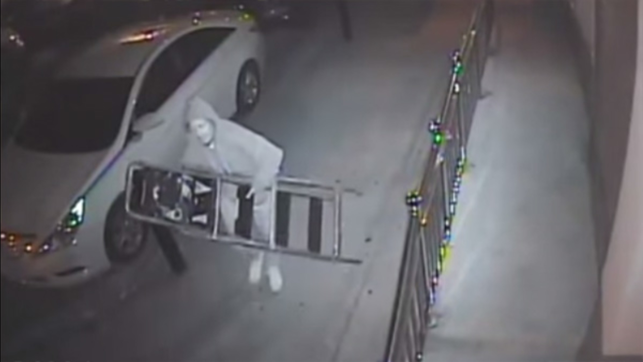 Man caught on camera stealing a camera