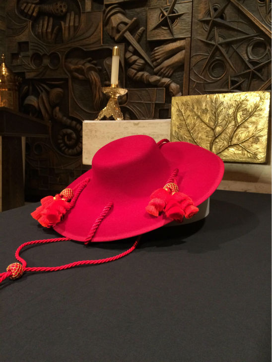 """<div class=""""meta image-caption""""><div class=""""origin-logo origin-image none""""><span>none</span></div><span class=""""caption-text"""">On Sunday, Cardinal George's ceremonial hat will be hung at Holy Name Cathedral. (WLS Photo)</span></div>"""