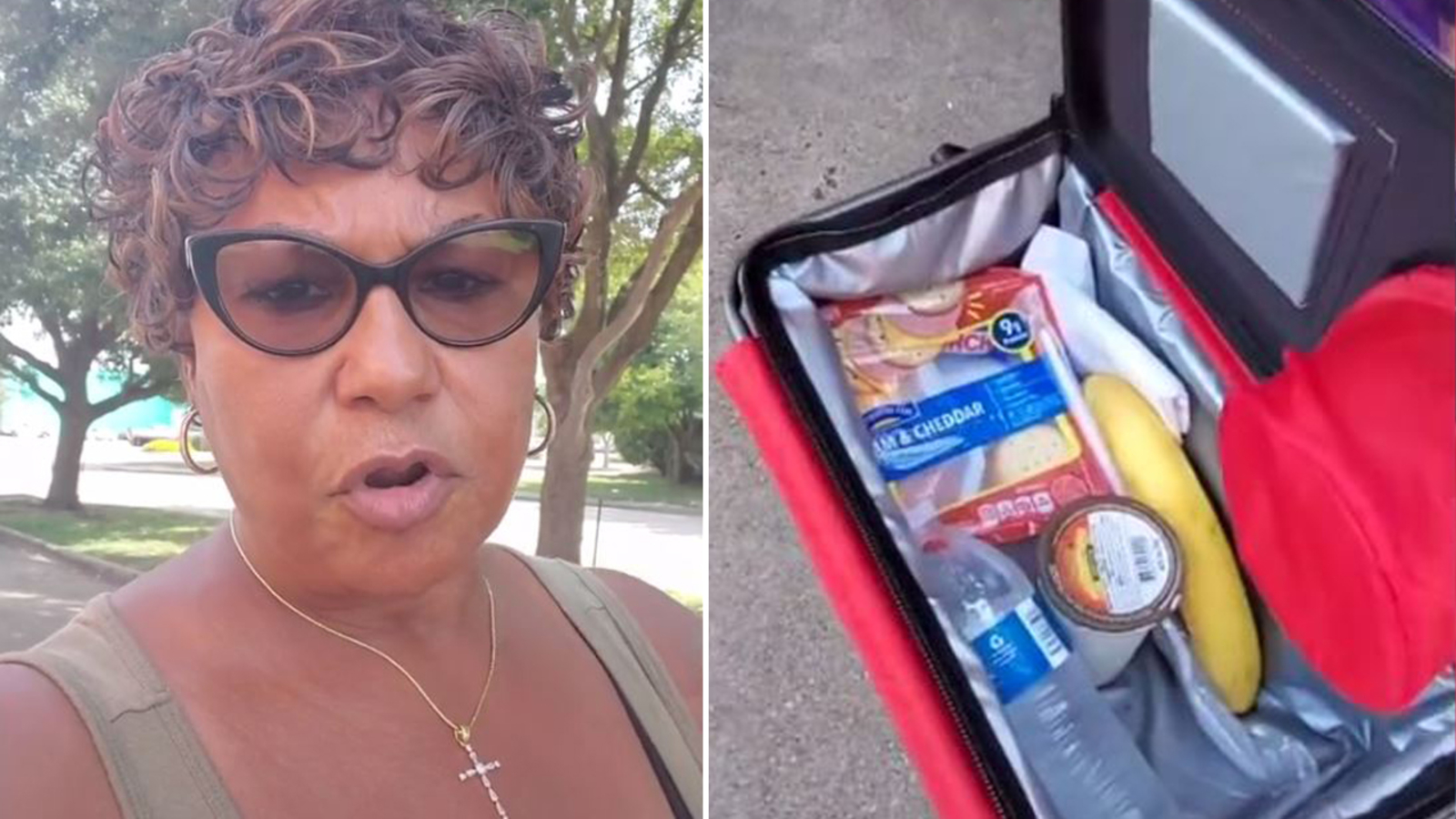 Houston woman has hilarious tips on waiting in line to vote in viral TikTok video