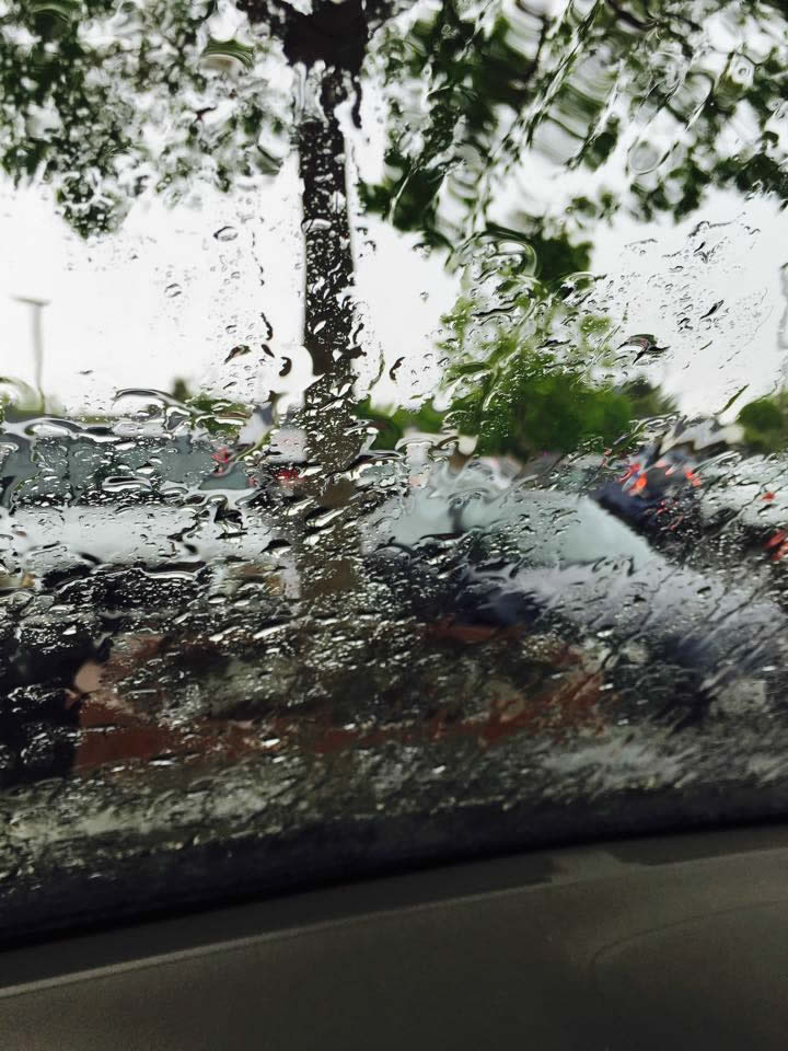 """<div class=""""meta image-caption""""><div class=""""origin-logo origin-image none""""><span>none</span></div><span class=""""caption-text"""">Rain fell in Rohnert Park, Calif. on May 14, 2015. (Photo submitted by Roberta T./Facebook)</span></div>"""
