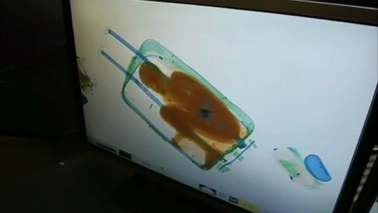 This startling image on an x-ray machine led to a disturbing discovery at an airport in Spain.