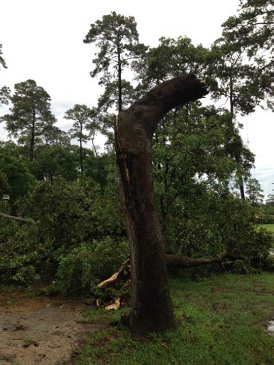 """<div class=""""meta image-caption""""><div class=""""origin-logo origin-image none""""><span>none</span></div><span class=""""caption-text"""">Photo from Tomball in morning storms (Photo/iWitness Reports)</span></div>"""