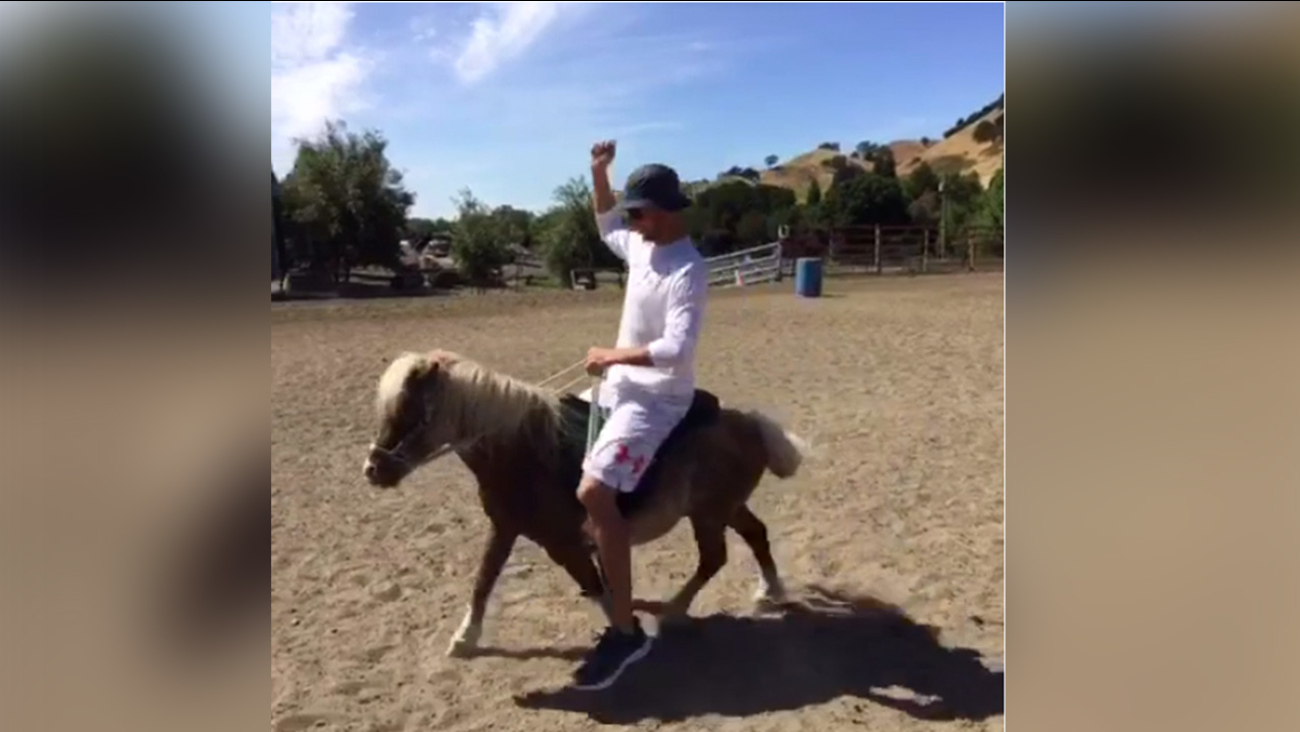 Video Golden State Warriors Stephen Curry Rides Mini Horse In