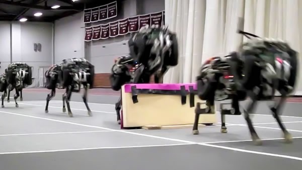 MIT released video of its famous robotic cheetah landing a series of running jumps.