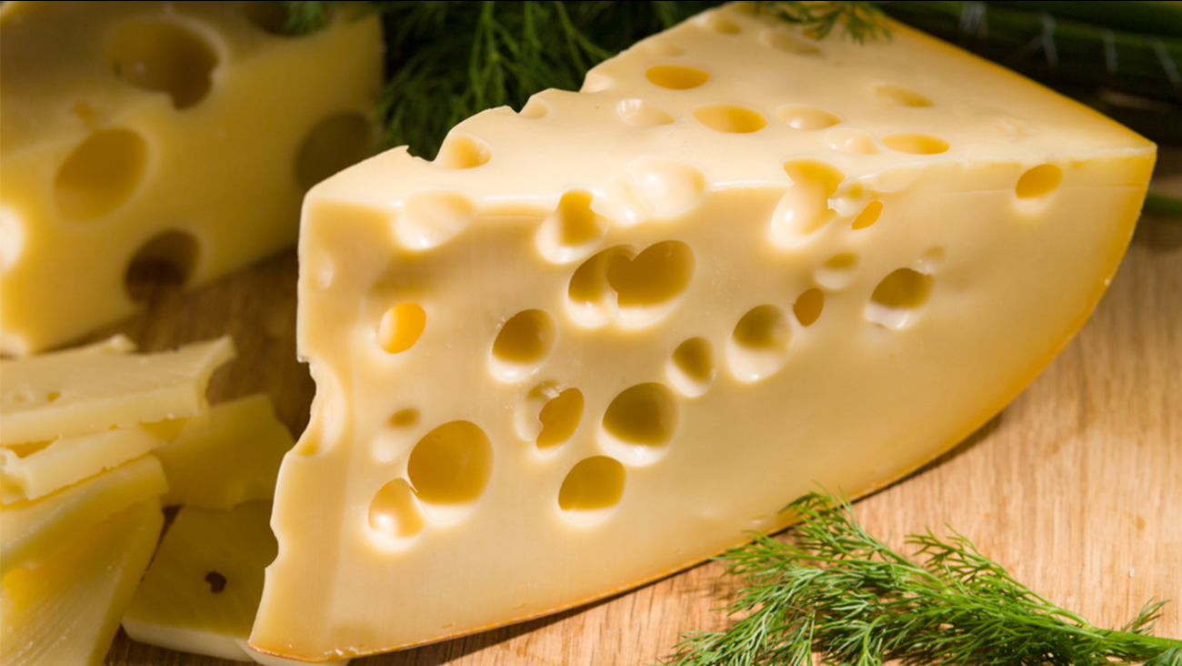 Image result for swiss cheese