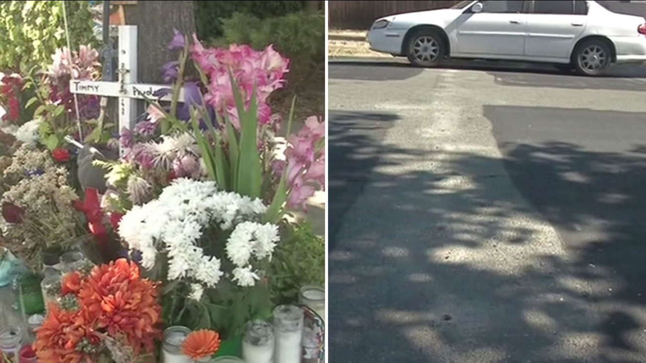 A petition drive is underway to install speed bumps on a residential street in Antioch following a deadly hit-and-run accident.