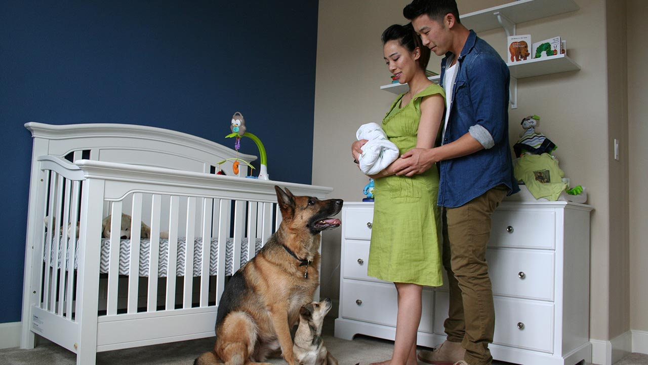 Byron and Monique Louie pose with their new son Dylan and their dogs Dunder and Munster.
