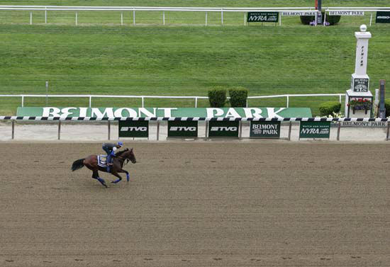 """<div class=""""meta image-caption""""><div class=""""origin-logo origin-image none""""><span>none</span></div><span class=""""caption-text"""">Kentucky Derby and Preakness Stakes winner American Pharoah, with exercise rider Jorge Alvarez up, gallops around the track (AP Photo/ Julie Jacobson)</span></div>"""