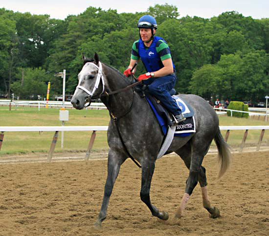 """<div class=""""meta image-caption""""><div class=""""origin-logo origin-image none""""><span>none</span></div><span class=""""caption-text"""">Exercise rider Lorenzo Moralez rides Belmont Stakes entrant Frosted back to the barn after a morning gallop at Belmont Park (AP Photo/ Garry Jones)</span></div>"""