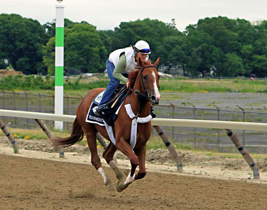"""<div class=""""meta image-caption""""><div class=""""origin-logo origin-image none""""><span>none</span></div><span class=""""caption-text"""">Belmont Stakes entrant Frammento, ridden by exercise rider Heather Stark, gallops on the training track at Belmont Park (AP Photo/ Garry Jones)</span></div>"""