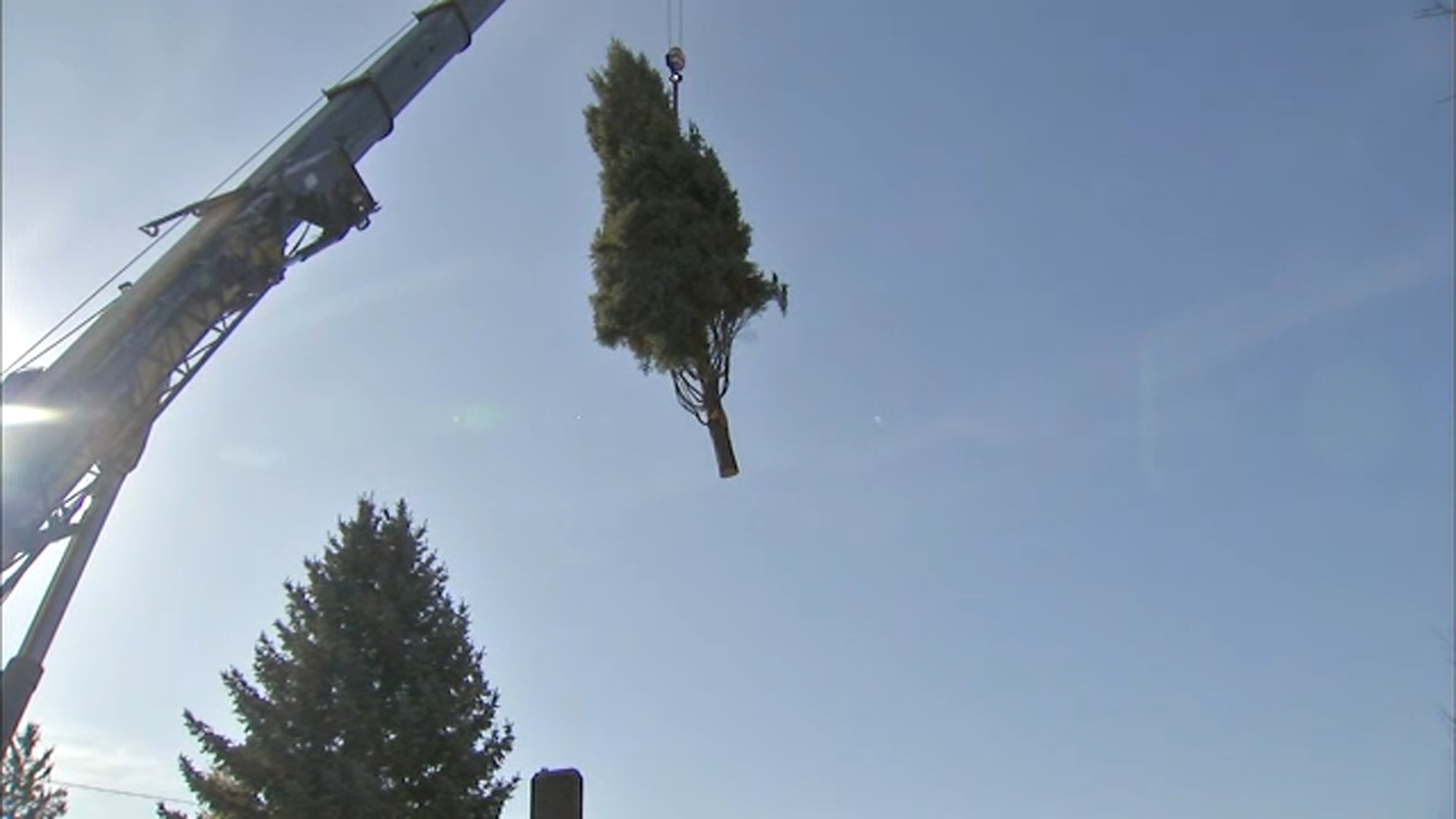 2021 Chicago Christmas Tree Chicago 2020 Christmas Tree Lighting Ceremony In Millennium Park To Take Place Virtually On City S Youtube Page Abc7 Chicago