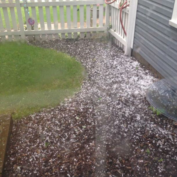 """<div class=""""meta image-caption""""><div class=""""origin-logo origin-image none""""><span>none</span></div><span class=""""caption-text"""">Hail in Naperville. Shared by Dana. (WLS Photo)</span></div>"""