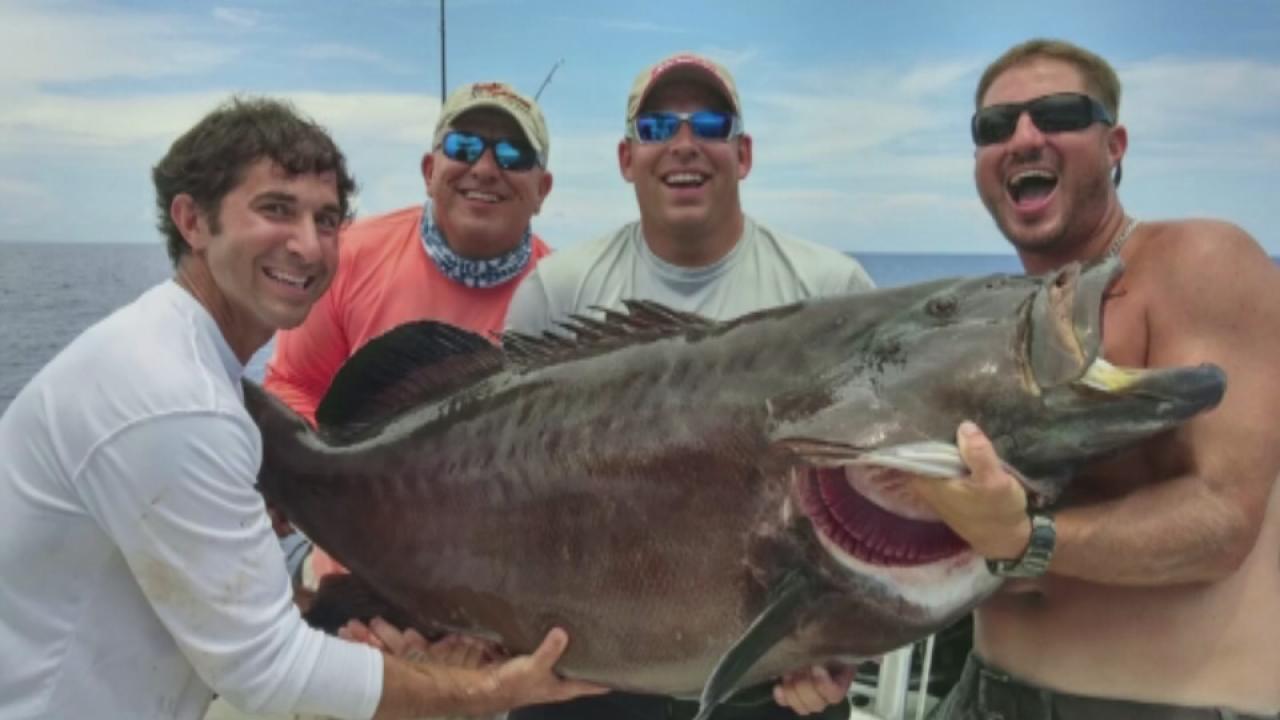Florida Man Catches Gigantic Black Grouper Possible World