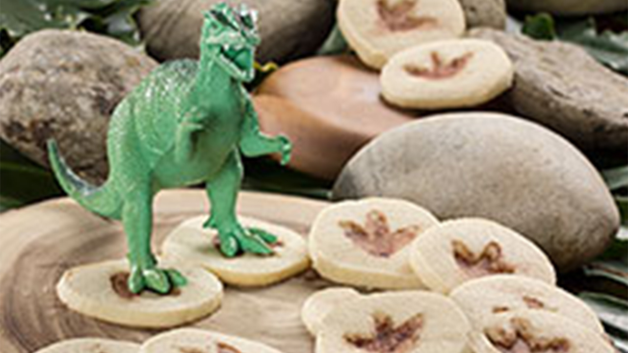 Fossil Cookies