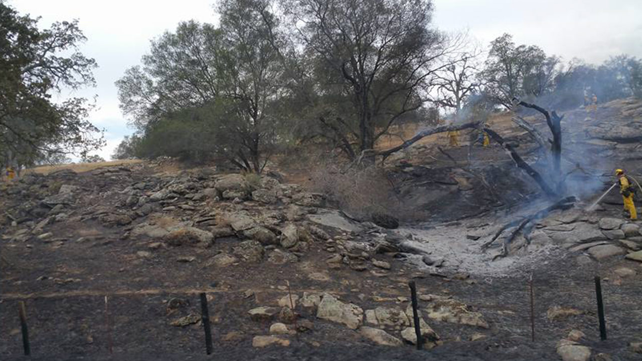 A grass fire broke out near the O'Neals area in Madera County on Tuesday, June 9, 2015.